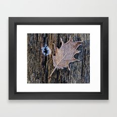 leaf, texture and frost Framed Art Print