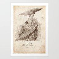 Petra N. Odon Art Print