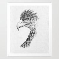 Black Eagle Art Print