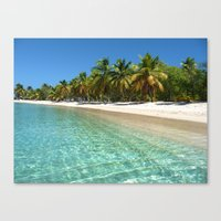 cove of nature 2 Canvas Print