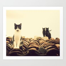 gatos en el tejado Art Print