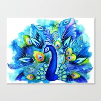 Peacock in Full Bloom Canvas Print