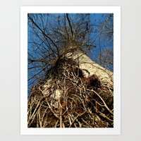 Don't forget to look up Art Print