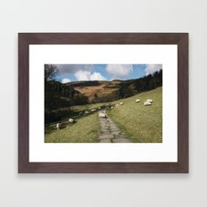 Stone footpath and grazing sheep. Edale, Derbyshire, UK. Framed Art Print