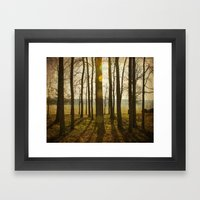 Afternoon Sunlight With … Framed Art Print
