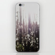 the woods  iPhone & iPod Skin