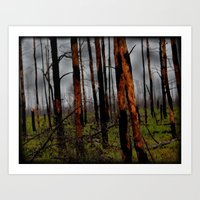 Burnt Forest  Art Print