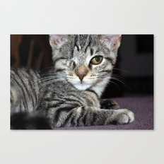 One-Eyed Wonder Canvas Print