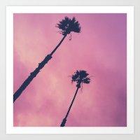Pink Haze   Palms Art Print