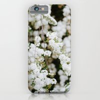 iPhone & iPod Case featuring Bridal Veil by Anna Delores