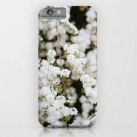 Bridal Veil iPhone 6 Slim Case