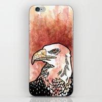 Bold Bird iPhone & iPod Skin