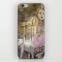Circus Life iPhone & iPod Skin
