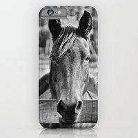Waiting (Black And White… iPhone 6 Slim Case