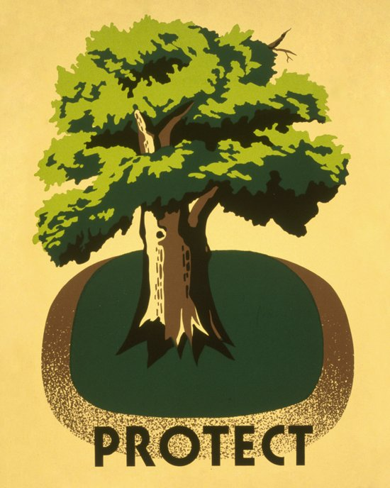 Protect greenery Art Print