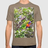 Rainbow Lorikeet In Tree Mens Fitted Tee Tri-Coffee SMALL
