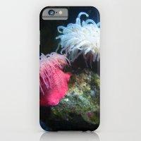 Anemone 2 iPhone 6 Slim Case