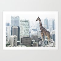 Giraffe In The City Art Print