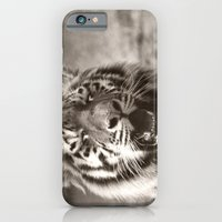iPhone & iPod Case featuring Tiger Cub 1 by Stephie Butler Photography