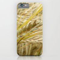 iPhone & iPod Case featuring Field #1 by Emma Conner