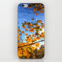 Autumns Arrival Art iPhone & iPod Skin