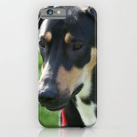 Doberman iPhone 6 Slim Case