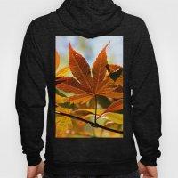 Japanese Maple Leaf Hoody