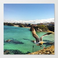 Hello Mr. Seagull Canvas Print