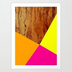 Wooden Colour Blocking Art Print