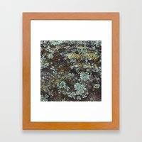 Granite And Lichen  Framed Art Print