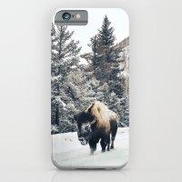 Frosty Bison iPhone 6 Slim Case
