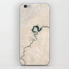 Trace nature iPhone & iPod Skin