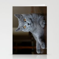 Diesel the cat 1 Stationery Cards