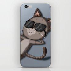 Sunbathing Cat iPhone & iPod Skin