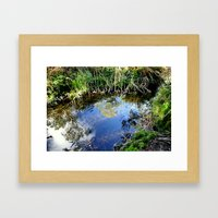 Reflections in a Pond Framed Art Print