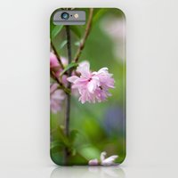 iPhone & iPod Case featuring Flowering Almond Blossoms II by Katie Kirkland Photography