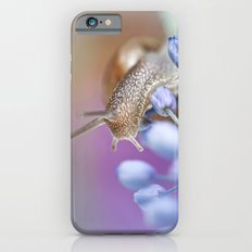Snail on Grape Hyacinths iPhone 6s Slim Case