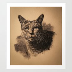 Nimbus Art Print