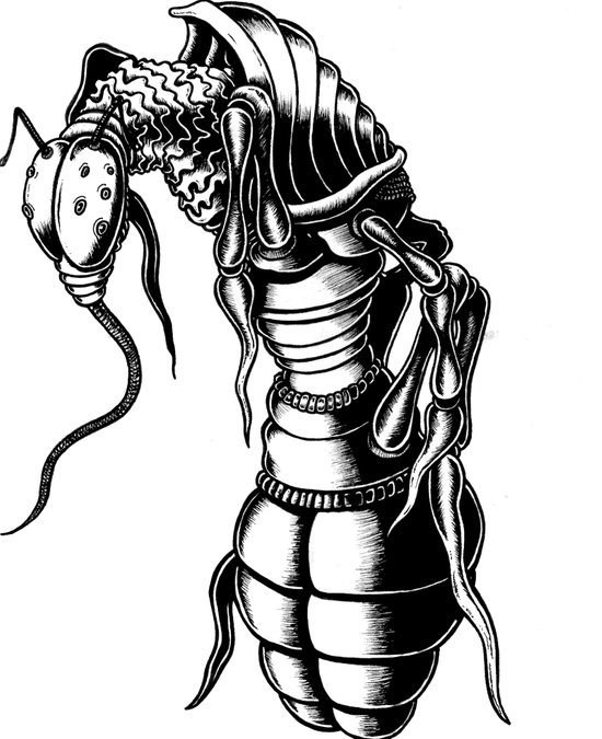 Aardvark Ant Art Print