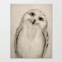 Snowy Owl Sketch Canvas Print