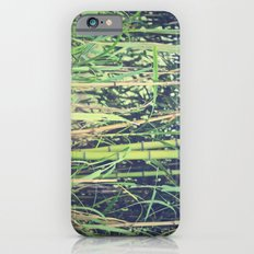 Ubiquitous Bamboo Slim Case iPhone 6s