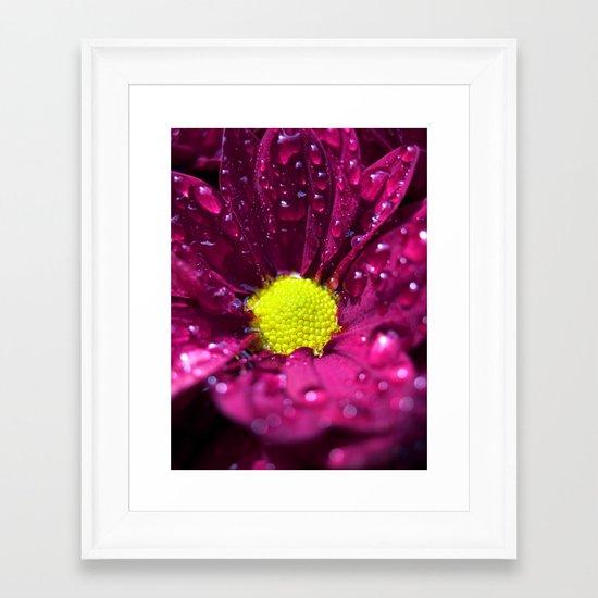 purple bloom II Framed Art Print