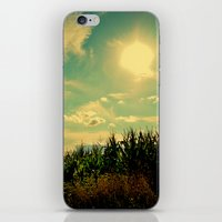 At the Edge 2.0 iPhone & iPod Skin