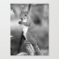 Get Out Of My Face Canvas Print