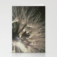 Macro Sunset Stationery Cards