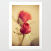A red rose for your sweetheart ... Art Print