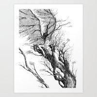 Tree Nymph Art Print