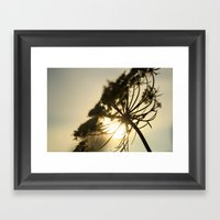 Lace Silhouette Framed Art Print