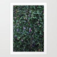 Greens Art Print