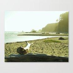 Navaro Beach IX Canvas Print